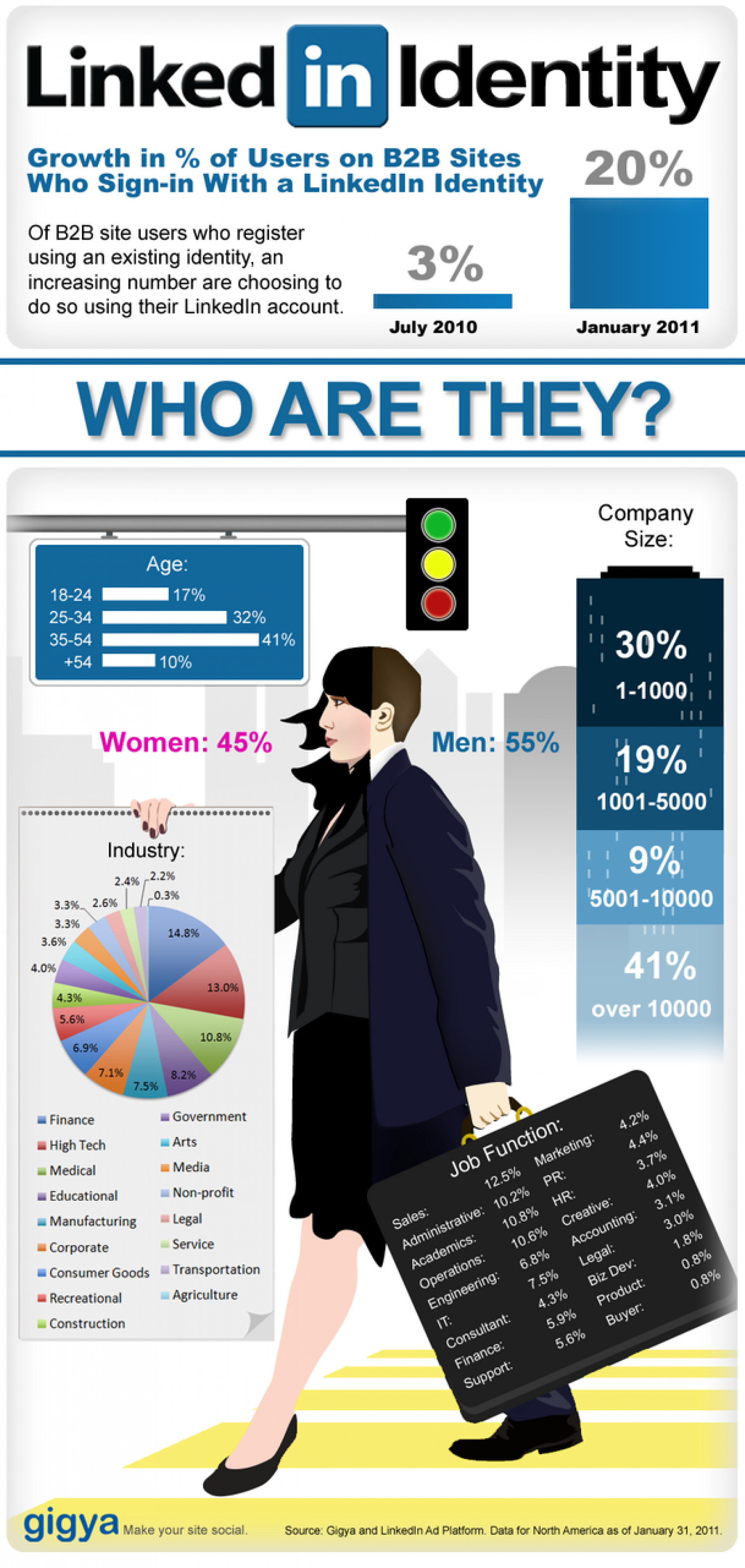 Linked In Identity Infographic