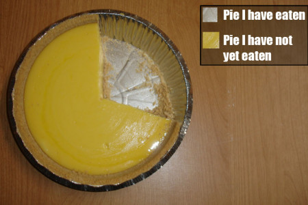 Literal Pie Chart Infographic