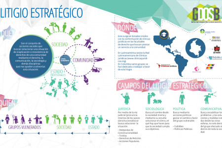 Litigio Estratégico / Strategy Litigation Infographic