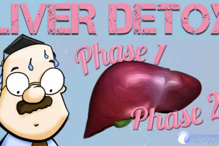 Liver Detox - Phase 1 and Phase 2 Infographic