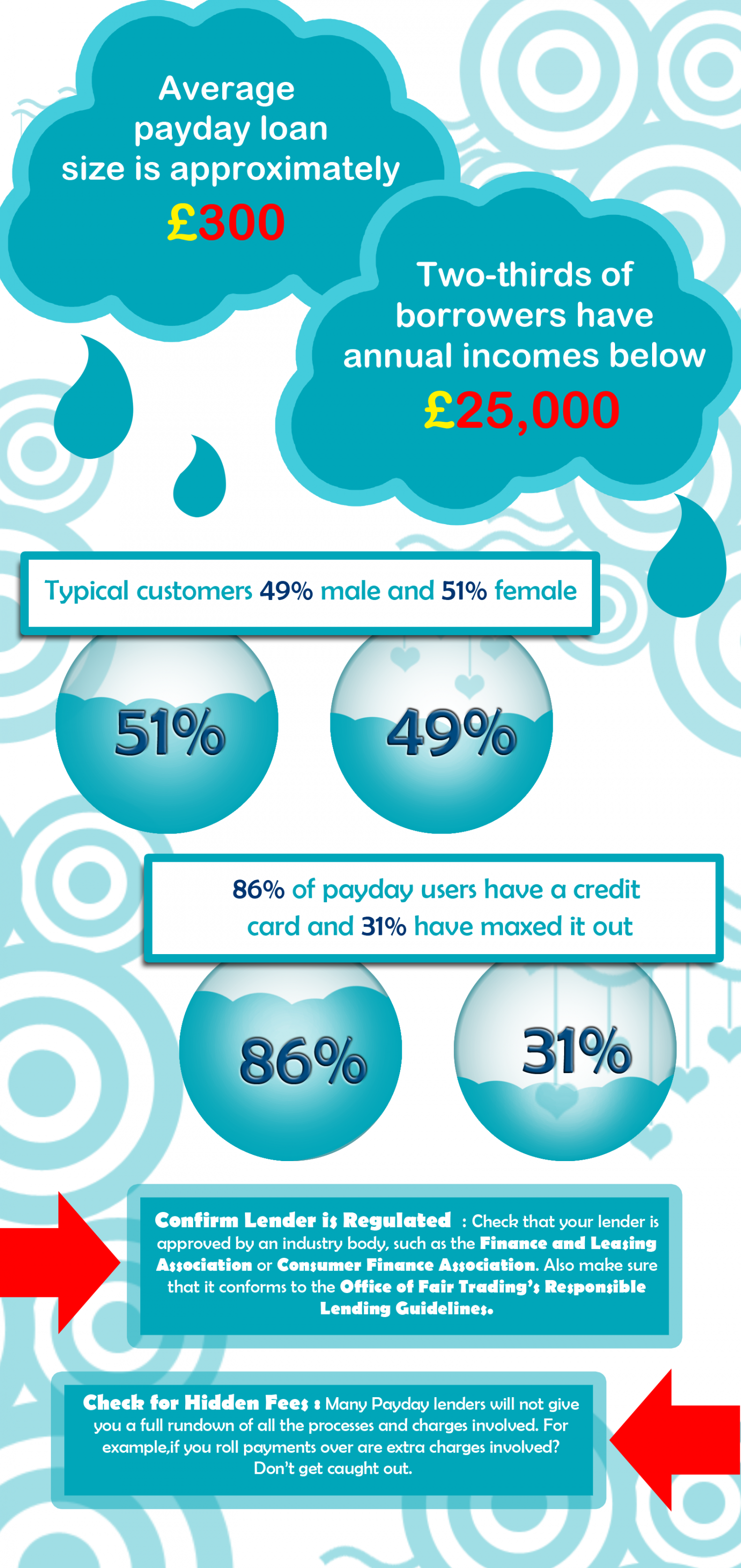 Loans Infographic
