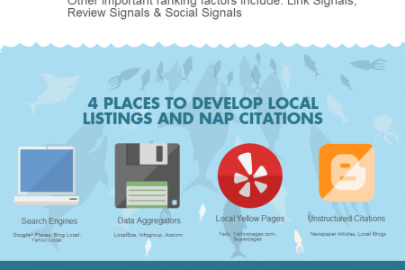 Local SEO Basics Infographic