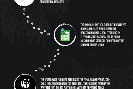 Logo designs and Animals Infographic