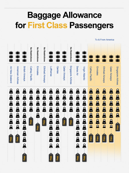 Long-Haul Airline Facilities for Business Class Travellers Infographic
