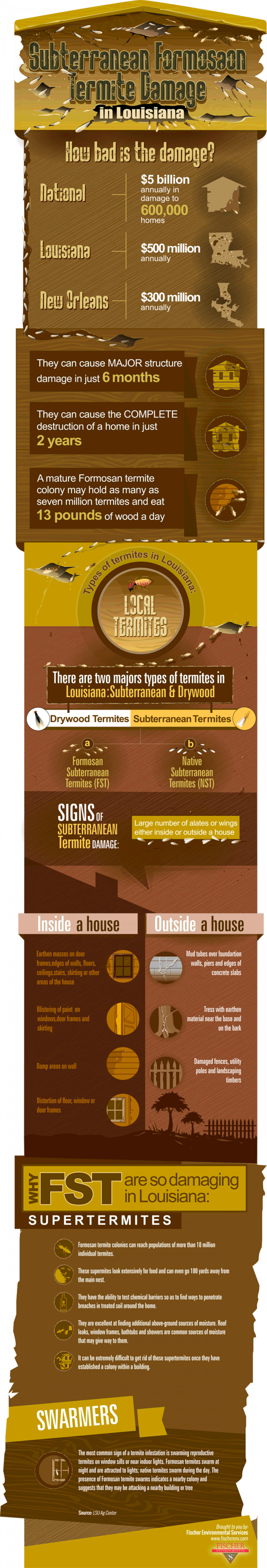 Louisiana Termite Damage Infographic