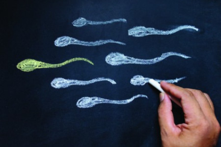 Low Sperm Count Concern Infographic