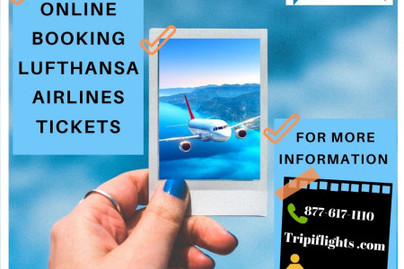 Lufthansa airlines reservations - Tripiflights - Dont Miss It !!  Infographic