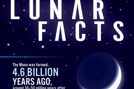 Lunar Facts Infographic