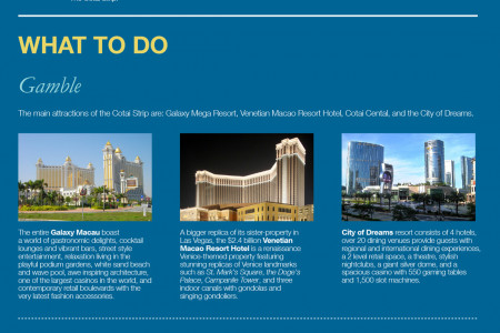 Macau Cotai Strip: A Business Travel Guide Infographic