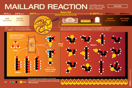 Maillard Reaction Infographic