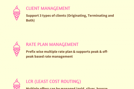 Major Functionalities of REVE Session Border Controller Infographic