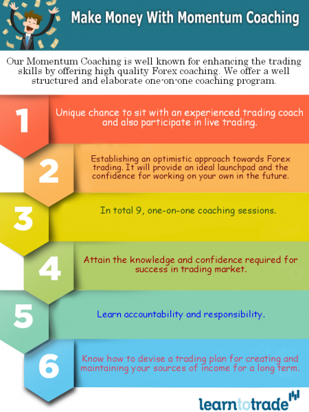 Make Money With Momentum Coaching Infographic