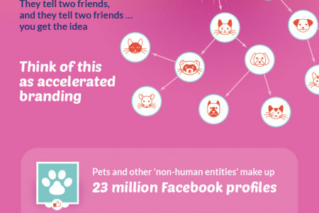 Make Your Pet Famous Infographic