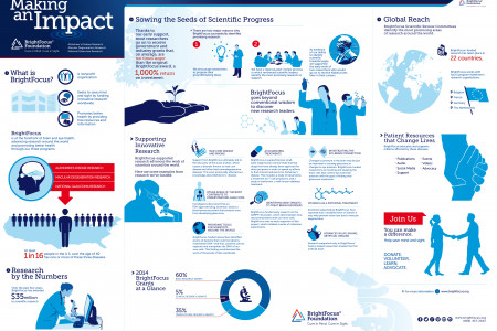 Making an Impact Infographic