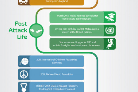 Malala's Journey: From a Pakistani School Girl to a Global Peace Icon Infographic