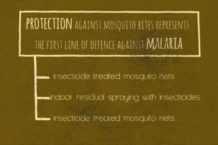 MALARIA infographic video Infographic