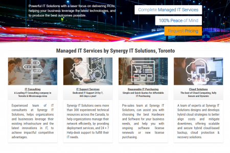 Managed IT Support Services by Synergy IT Solutions Infographic