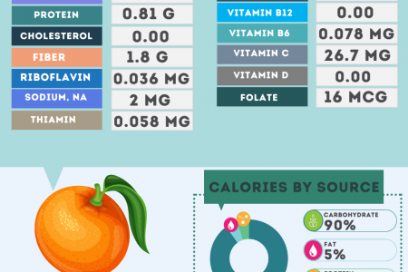 Mandarin nutrition facts Infographic