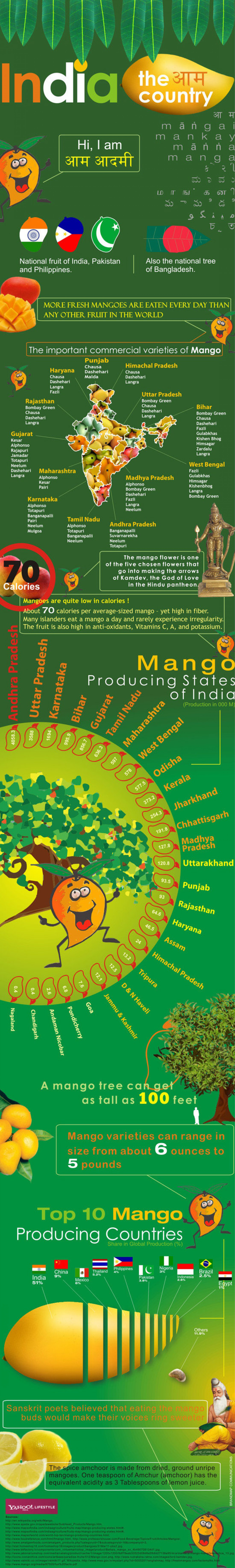 Mango map of India Infographic