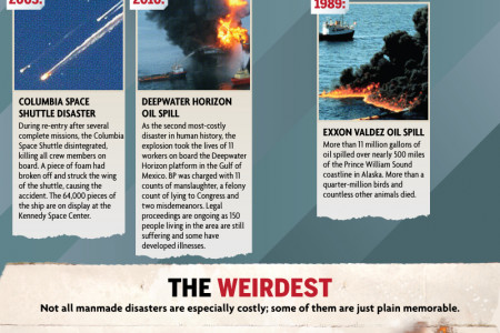 Man-Made Disasters: Our Own Fault Infographic