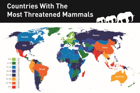 MAP: The Countries With The Most Threatened Mammals Infographic