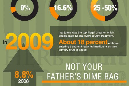 Marijuana: Barely Legal but Dangerous Infographic