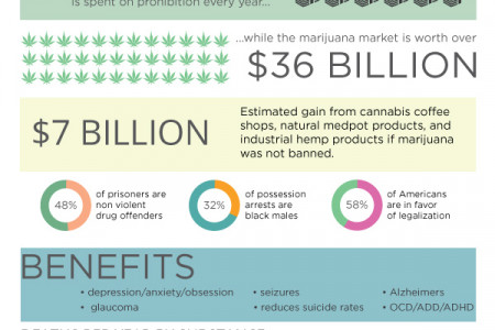 Marijuana Facts Infographic