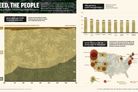 Marijuana Goes Mainstream Infographic