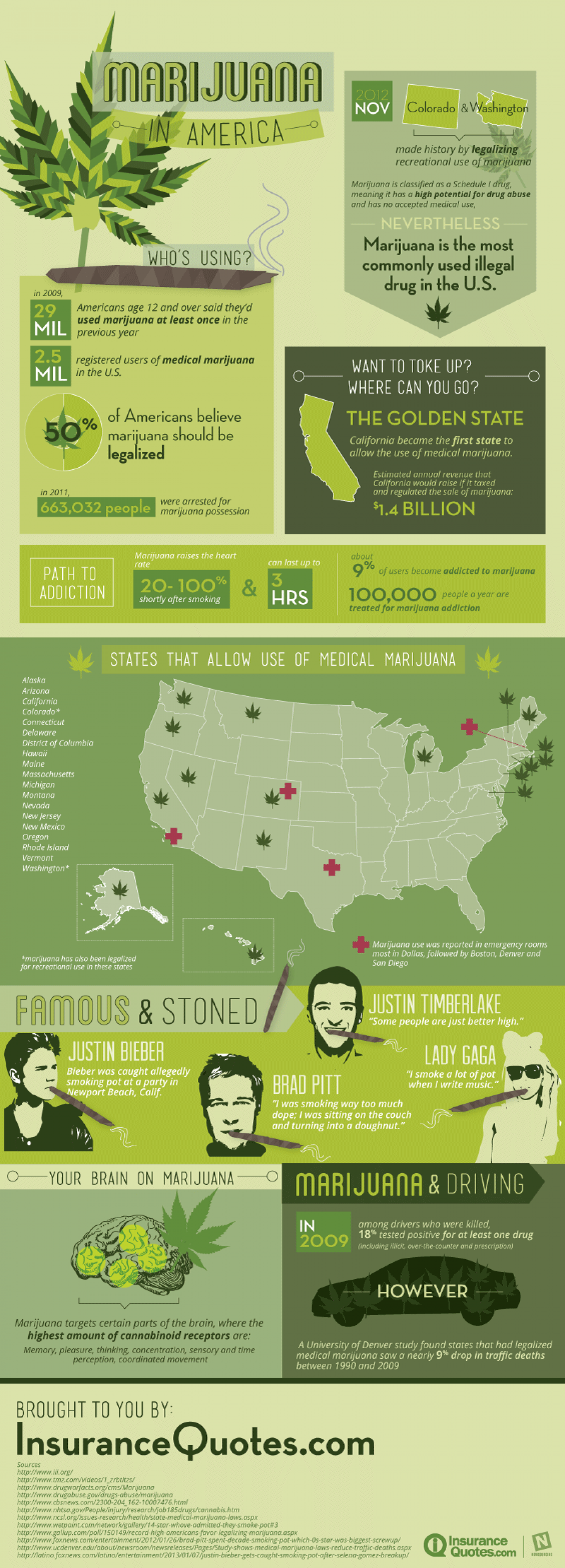 Marijuana in America Infographic