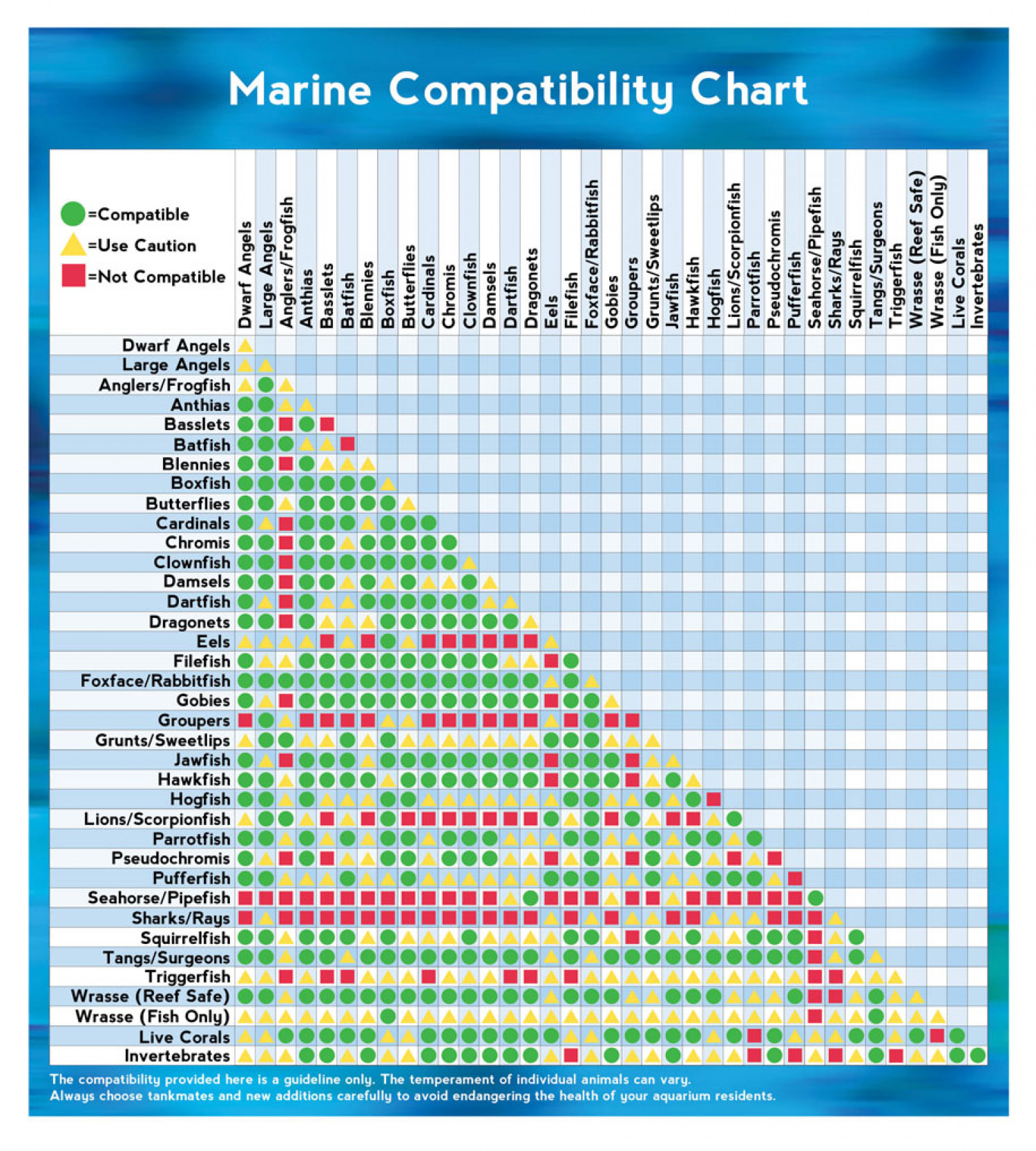 Marine animal compatibility chart for Saltwater fish compatibility chart