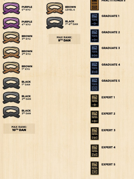 Martial Arts Belt Ranks Infographic