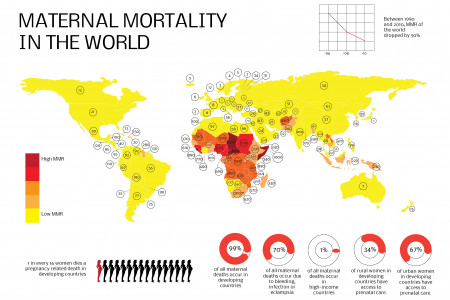 Maternal mortality in the world Infographic