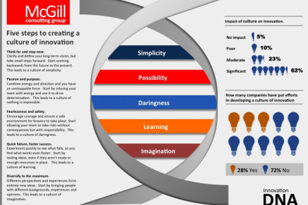 McGill Consulting Group Innovation DNA model Infographic