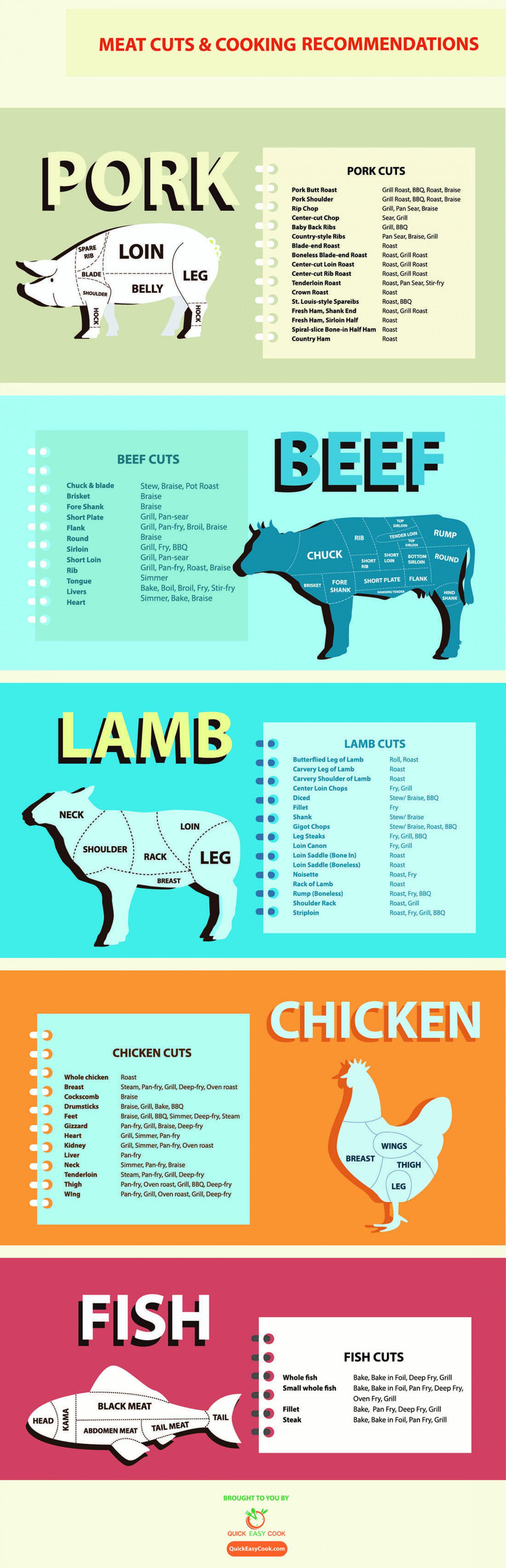 Meat Cuts & 5 Basic Cooking Techniques Infographic