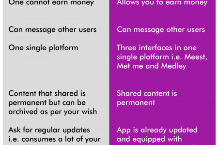 Meest vs Instagram Are Two Different Apps Infographic