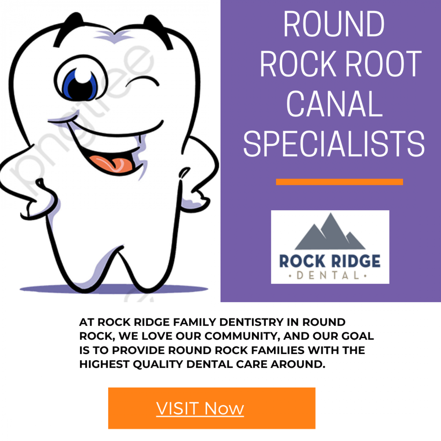 Meet The Round Rock Root Canal Specialists Infographic