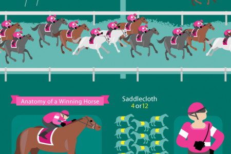 Melbourne Cup Winners Infographic