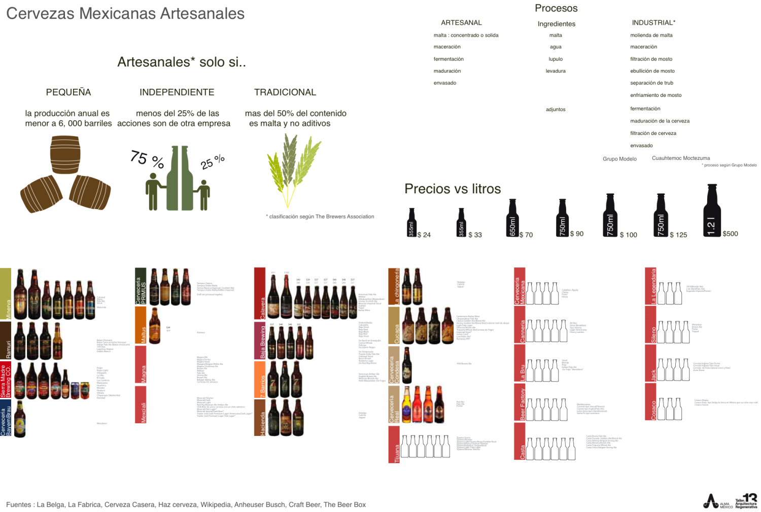 Mexican beer Infographic