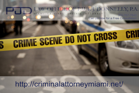Miami Criminal Defense Attorney Infographic