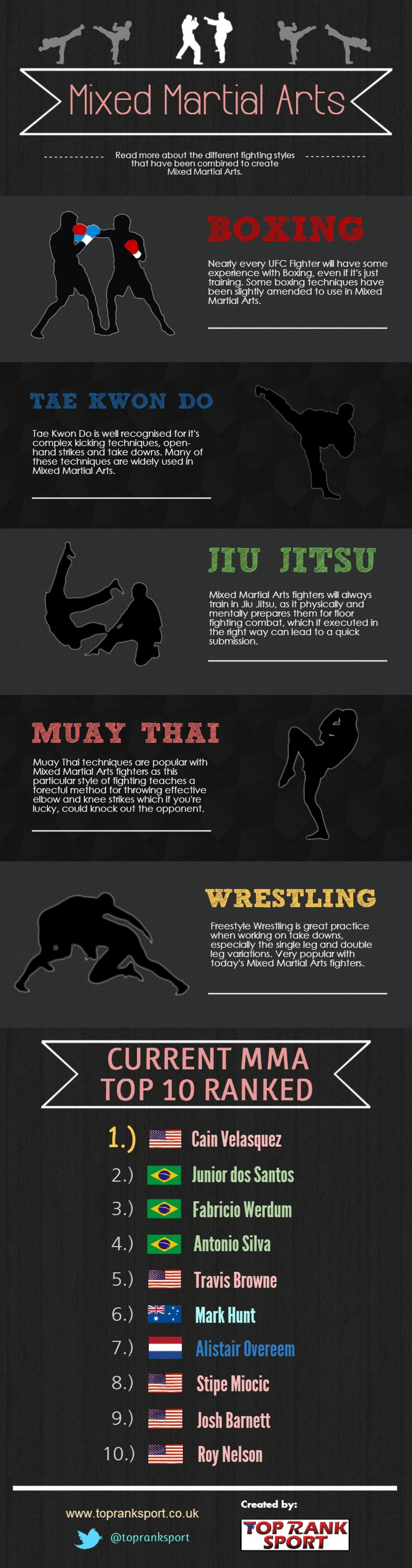 Mixed Martial Arts Fighting Styles Infographic