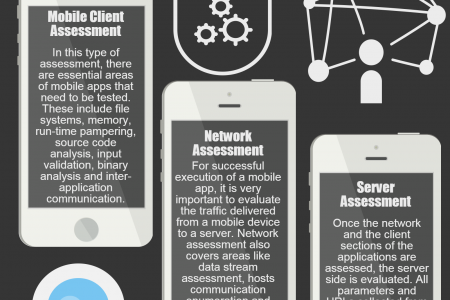 Mobile App Assessment Infographic