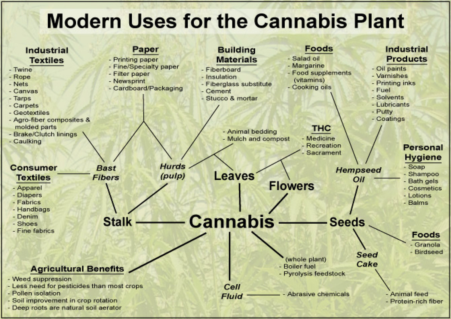 http://thumbnails-visually.netdna-ssl.com/modern-uses-for-the-cannabis-plant_50290aa50f1a2_w1500.jpg