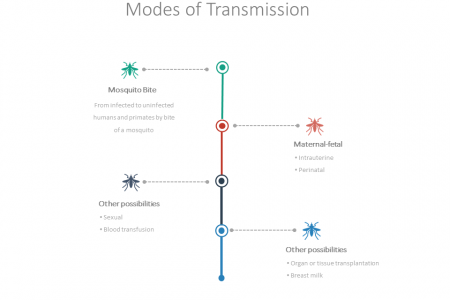 Modes of Transmission Infographic