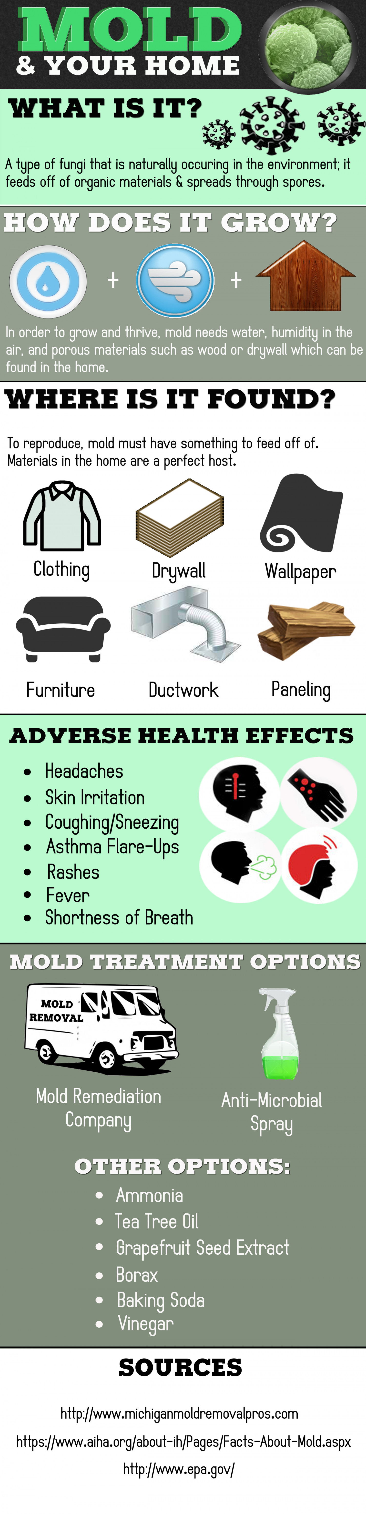 Mold & Your Home Infographic