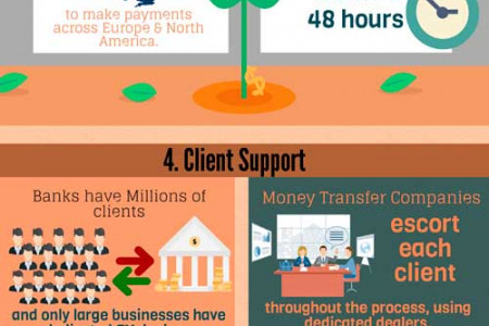 Money Transfer Companies And Banks Infographic