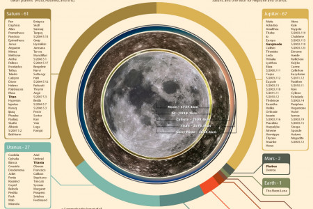 Moons of the Solar System Infographic