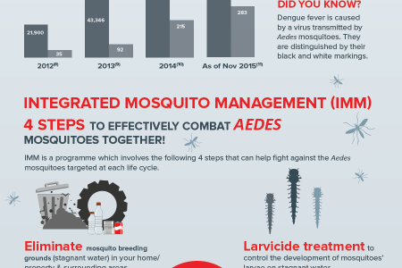 Mosquito Infestation in Malaysia Infographic