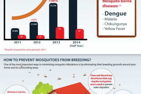 Mosquito Infestations in Malaysia Infographic