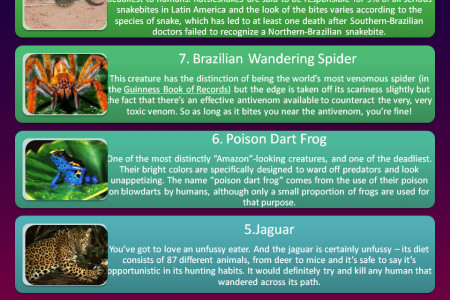 Most dangerous animals in the Amazon Infographic