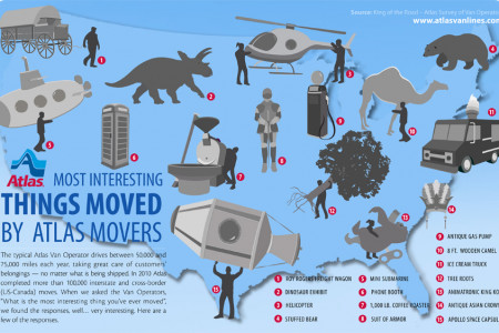 Most Interesting Things Moved by Atlas Movers Infographic